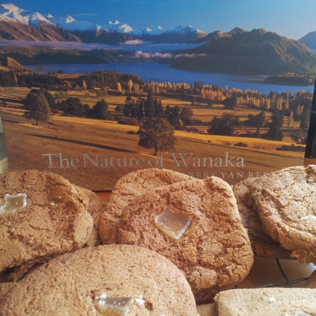 Gingernuts with Wanaka bg